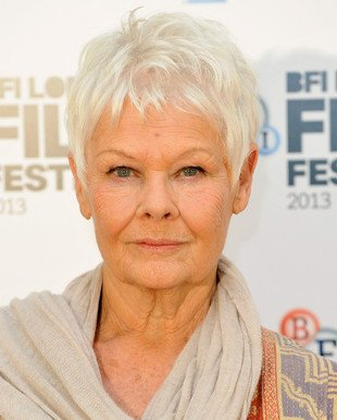 Judy Dench Gray Hair Color